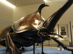 巨大なカブトムシの展示造形2