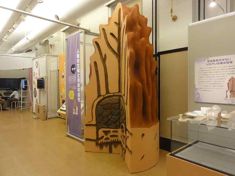 国立科学博物館のアリ塚の模型1