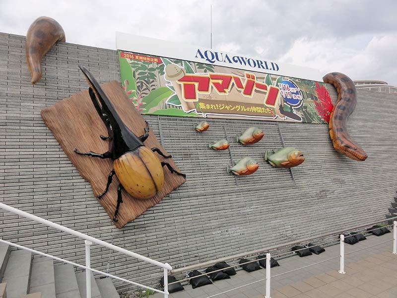 アクアワールド茨城県大洗水族館の夏期特別企画「アマゾン」