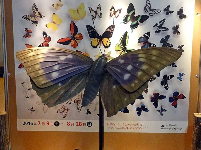 オオムラサキの展示模型1