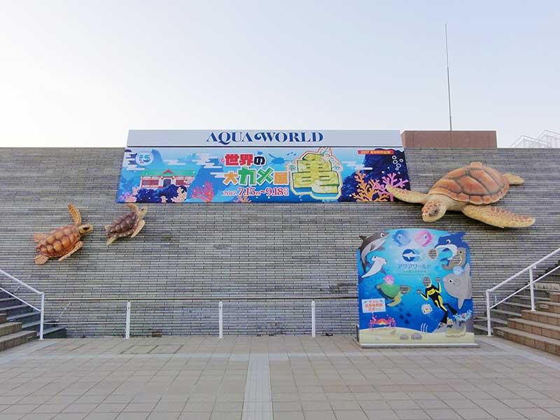 アカウミガメの企画展用看板1