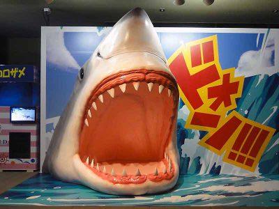 サメの立体造形(フォトスポット用)2