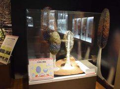 変形菌カットモデル