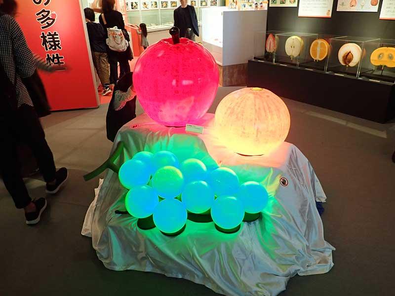 光る果物の立体造形1