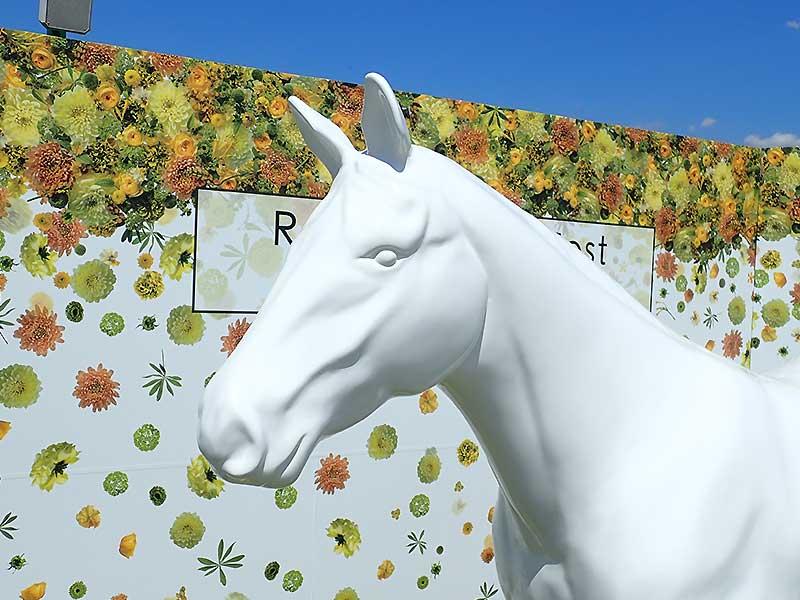 サラブレッド馬の立体造形4