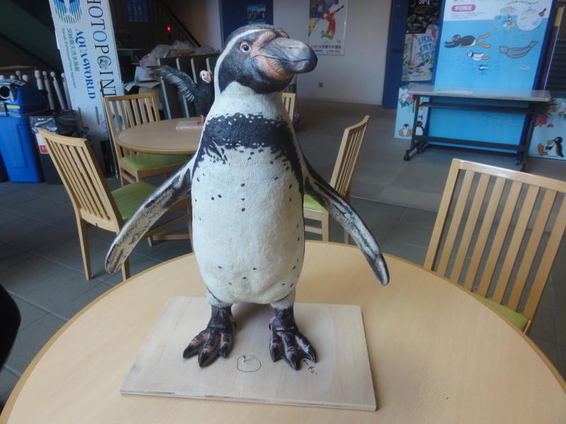 フンボルトペンギンの立体造形