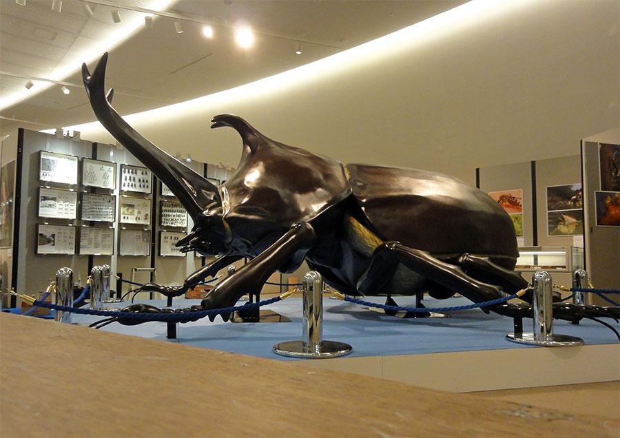 巨大カブトムシの展示立体造形を製作