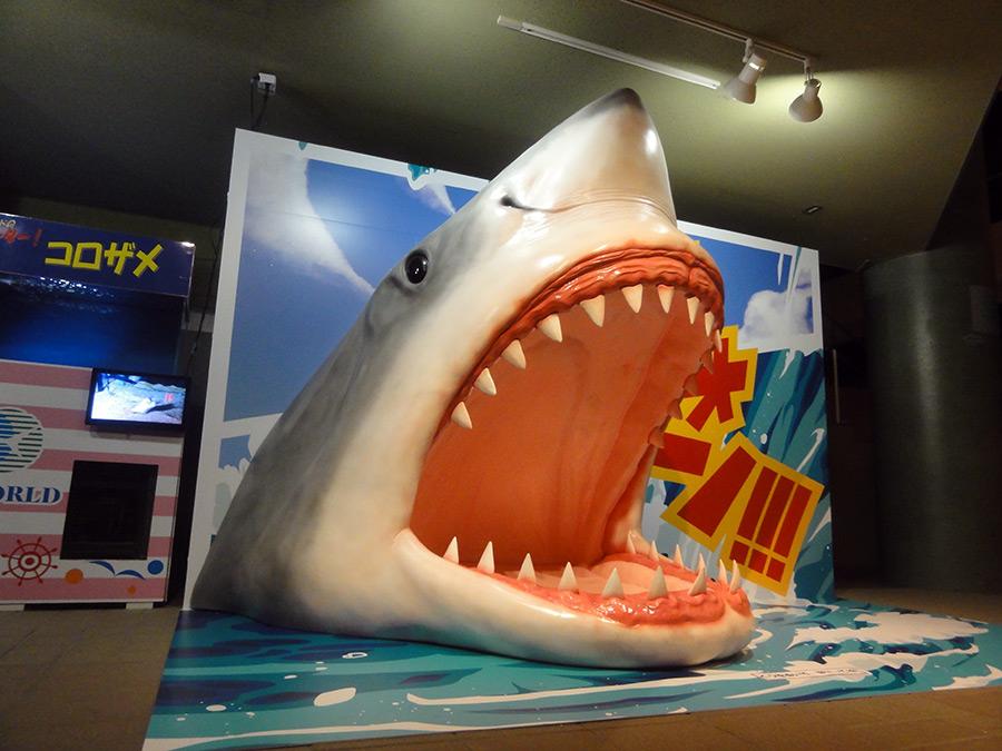 サメの立体造形1