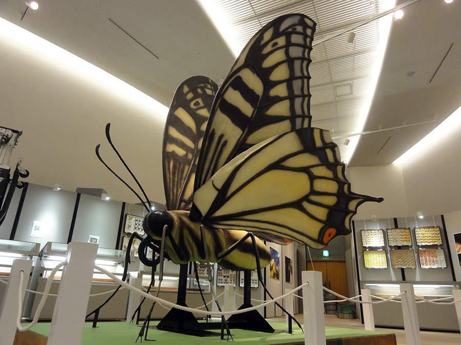 アゲハチョウの巨大展示模型